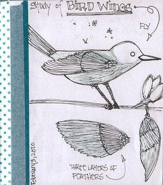 Birdwings
